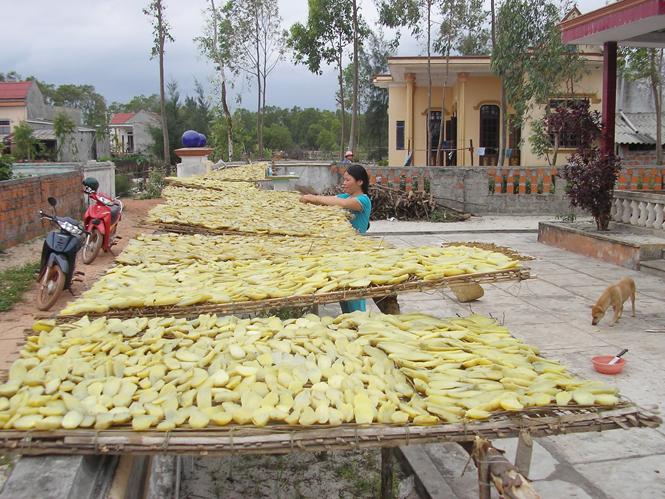 Làng nghề khoai gieo Quảng Bình