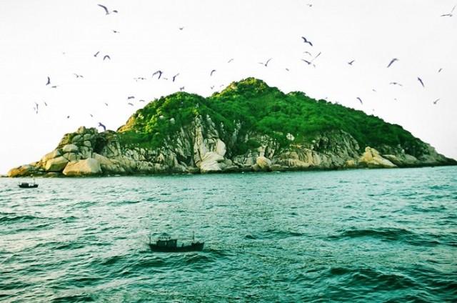 Photo of Hành trình khám phá đảo Chim
