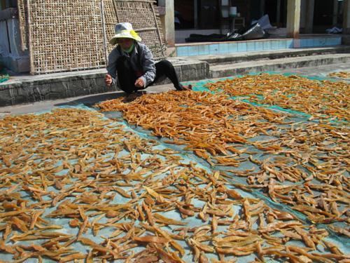 Photo of Làng nghề khoai gieo – Hải Ninh Quảng Bình