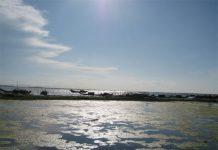 Phá Hạc Hải